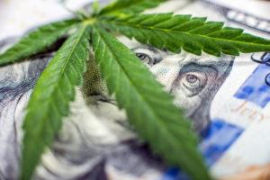 Marijuana Business Financing